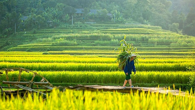 Pu Luong - A majestic place for summer getaway in northern Viet Nam