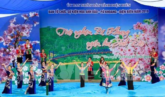 Dien Bien: Pa Khoang hosts second cherry blossom festival