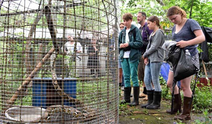 Tour bảo tồn sinh thái thu hút du khách quốc tế tại Phong Nha – Kẻ Bàng