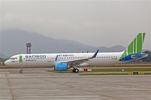 COVID-19: Domestic airlines reduce flight frequency
