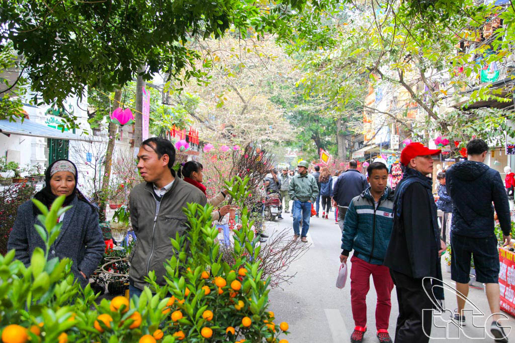 Hang Luoc flower market (Photo by Anh Dung)